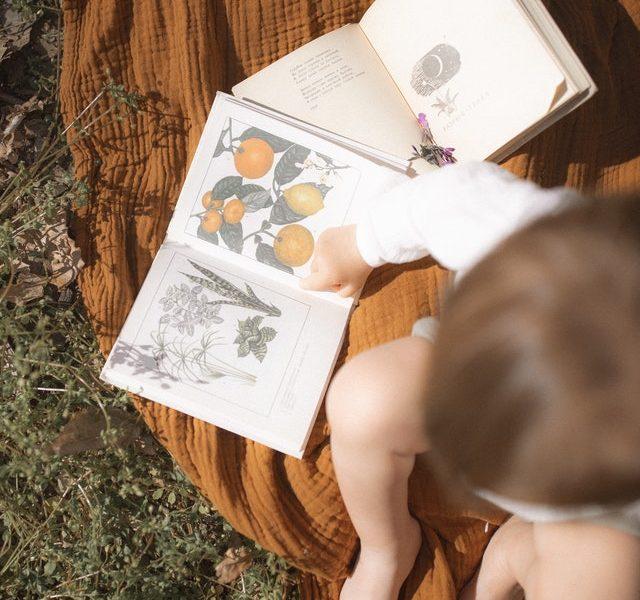 libros sensoriales montessori